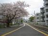 05_04_11wadamisaki2