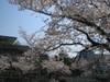 Ashiyagawa01_1